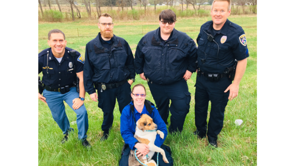 Police and Elkhart County Humane Society rescue dog running on Toll