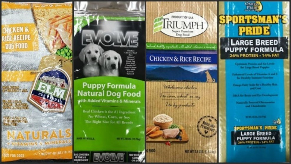 Best Grain Free Dog Food 2020 9 brands of dry dog food recalled | WSBT
